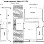foto planimetria Sangiovese Castello di Pratelli